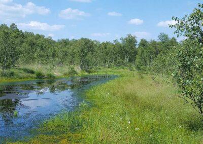 Naturpark Teufelsmoor